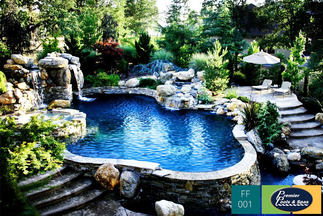 Freeform swimming pools premier pools spas for Best swimming pool designs