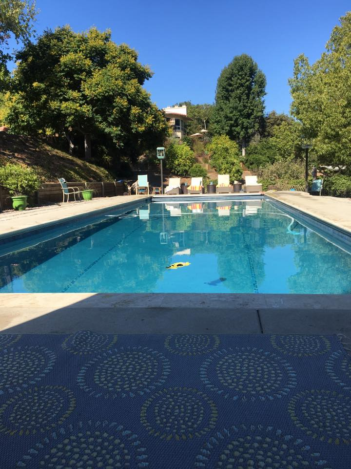 Jana perkins shared their premier pools story premier for Premier pools