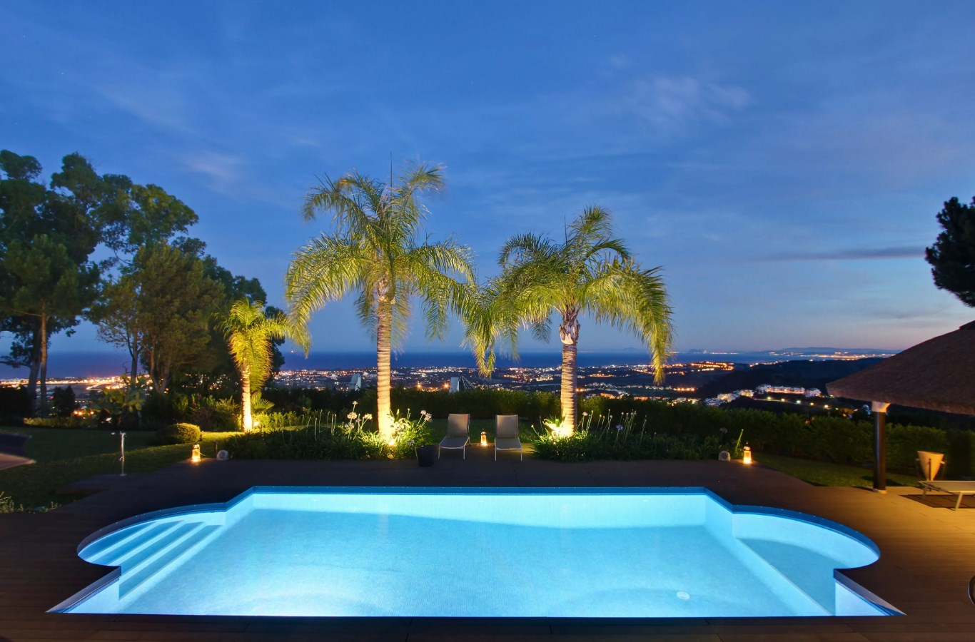 What are the Best Types of Trees to have around your pool landscaping? 1