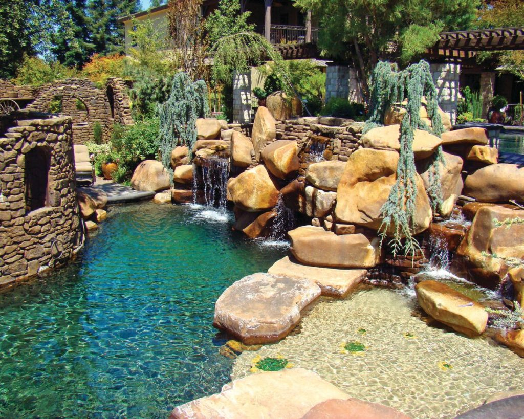 pool landscaping plants